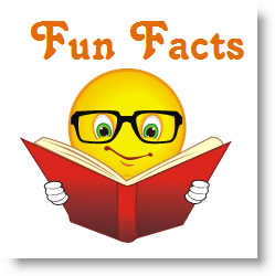 Fun facts communication